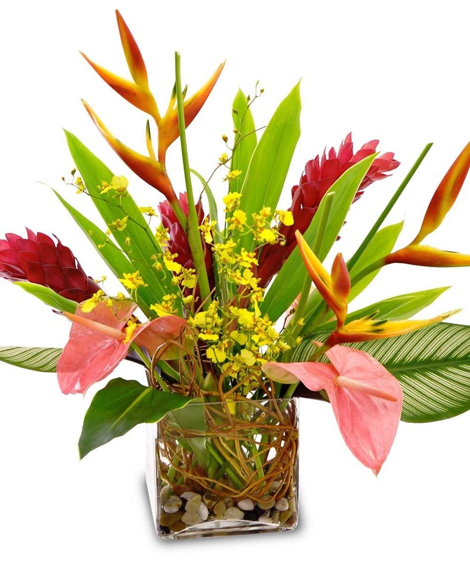 Hawaiian paradise tropical flowers florist la mesa california izmirmasajfo