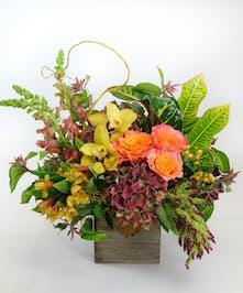 Cympidium Orchids, Garden Roses, Croton Foliage