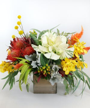 Kale, Pincushion Protea, accented with dusty miller