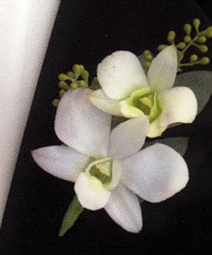 Boutonniere White Orchid