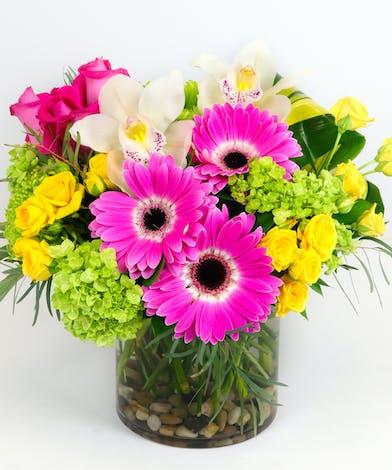 Gerbera Daisies, Green Full Bloom Hydrangea