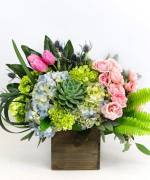Spray Roses, Succulents, Hydrangea & Tulips