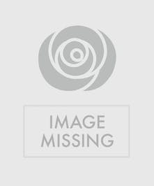 Wow!  100 Roses Arranged
