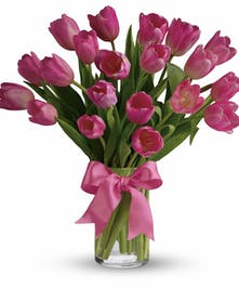 Passion Pink Tulips