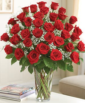 36 Red Roses Arranged with Babies Breath