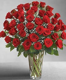 48 Red Roses Arranged With Babies Breath