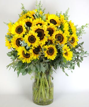 WOW! 50 Sunflowers Arranged!