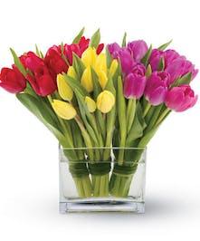 Tulip Floral Arrangements, Florist San Diego