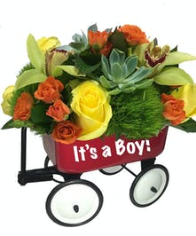 Red Wagon, Fresh Flowers, New Baby Gift