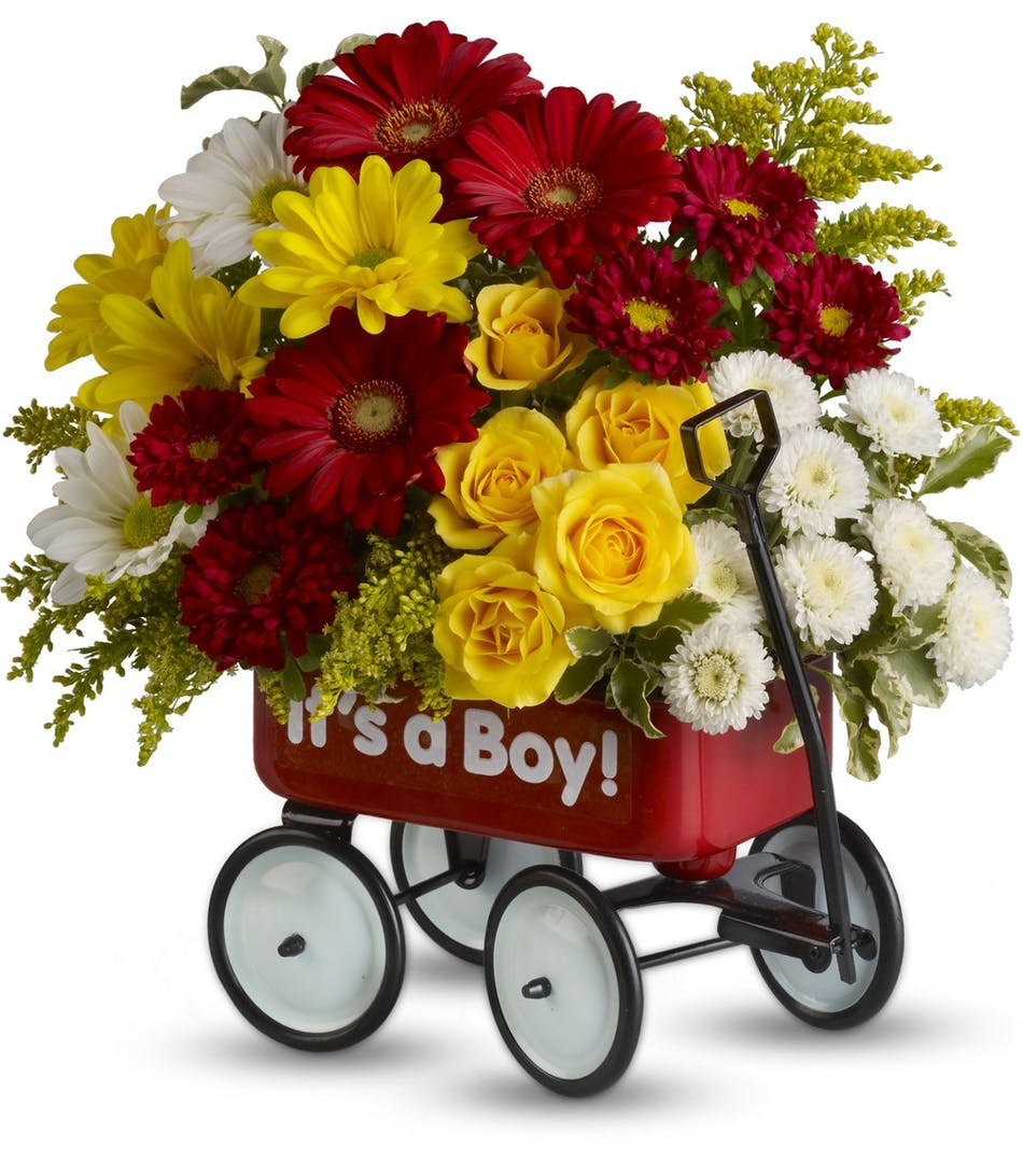 Babys first wagon boy voted best florist in san diego san diego babys first wagon boy voted best florist in san diego san diego ca flowers same day flower delivery izmirmasajfo