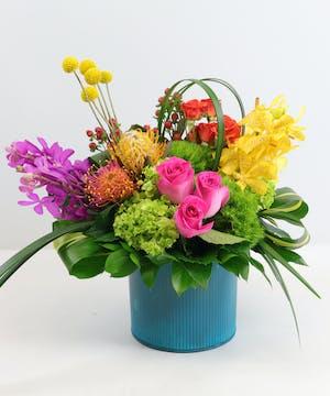Wonder Floral