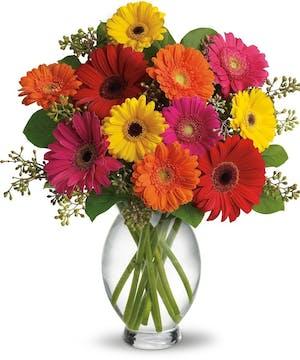 Gerber daisies Floral Arrangements, Florist San Diego