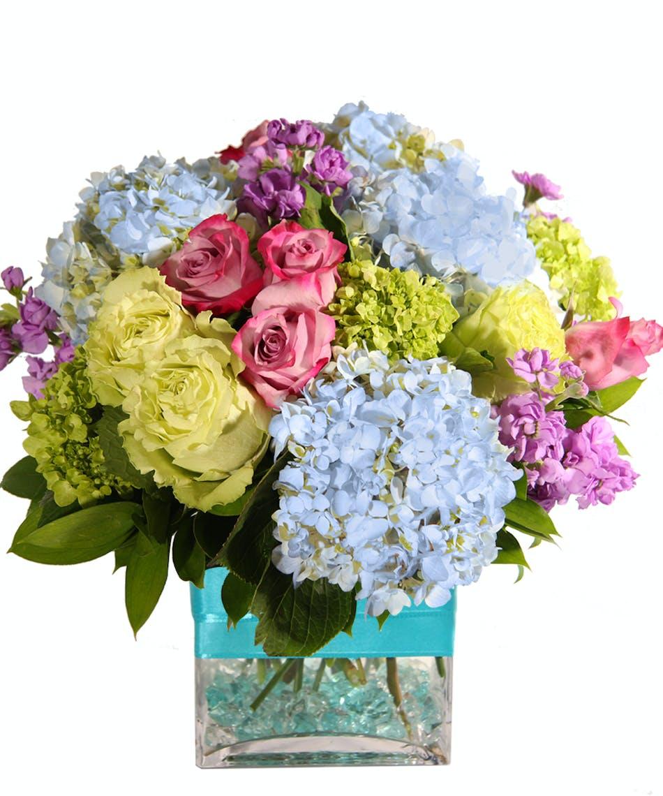 Hello Spring Spring Flowers Hydrangea Roses
