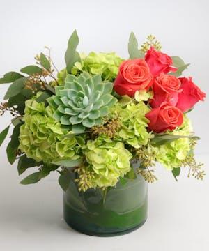 Orange Roses, Green Hydrangea, California Succulents