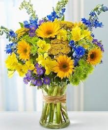 Sunflowers of San Diego