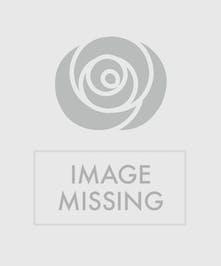 Rustic Roses