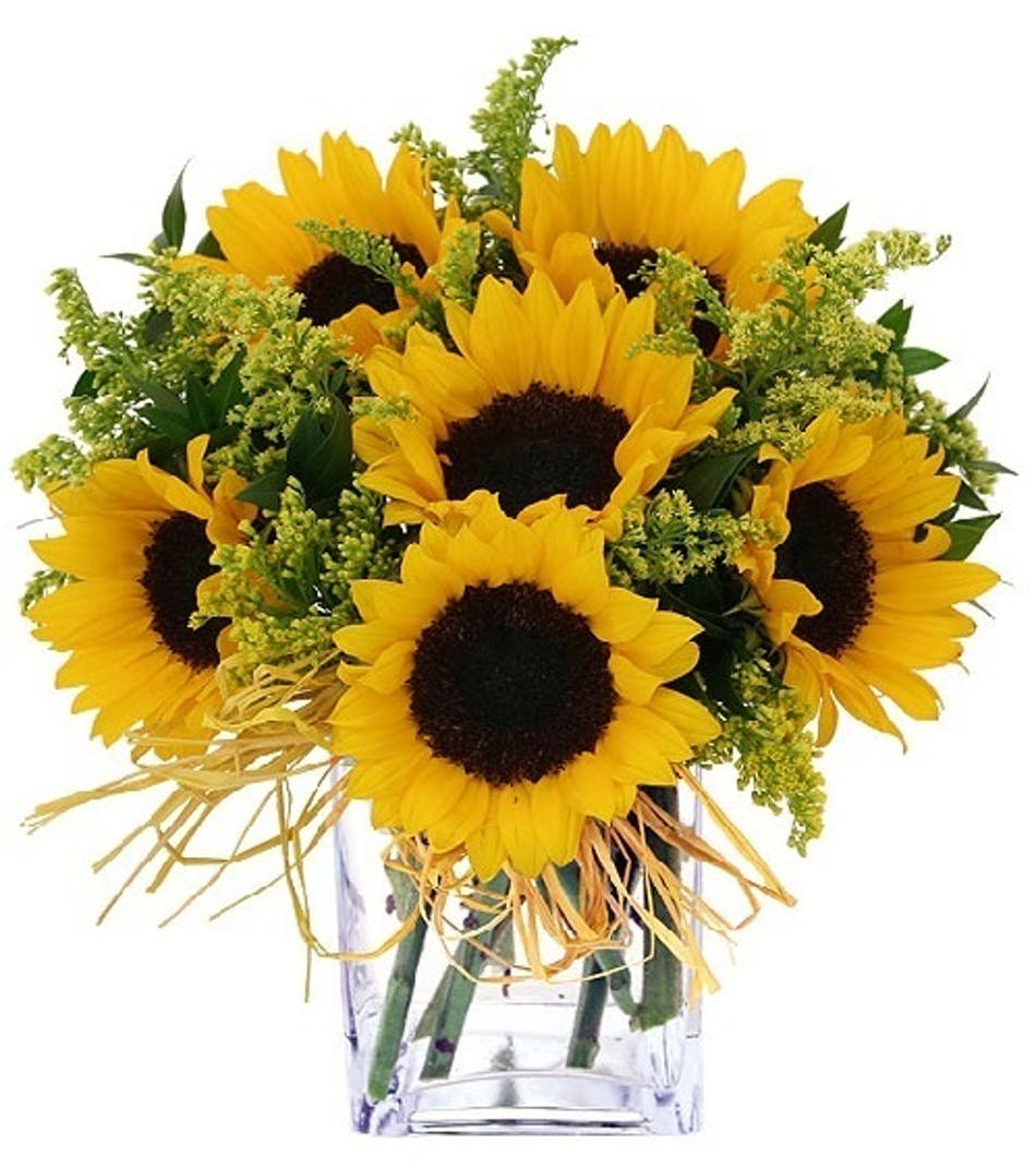 Sunflower Simplicity Yellow Sunflowers Allens Flowers San Diego