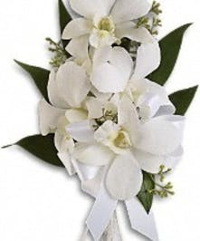 Corsage Dendrobium White orchid