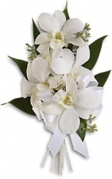 Corsage dendrobium white orchid voted best florist in san diego corsage dendrobium white orchid voted best florist in san diego san diego ca flowers same day flower delivery mightylinksfo