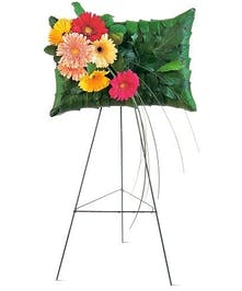 Gerbera Pillow'