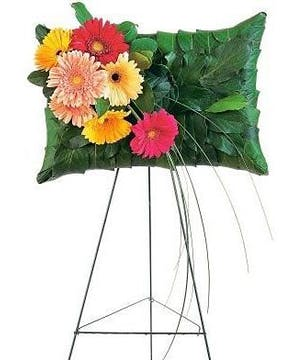 Gerbera Pillow