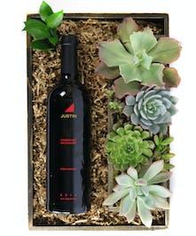Wine & Succulents