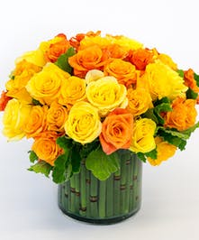 Ecuadorian Roses, San Diego Flower Shop