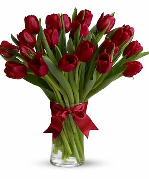 Red Tulips Love