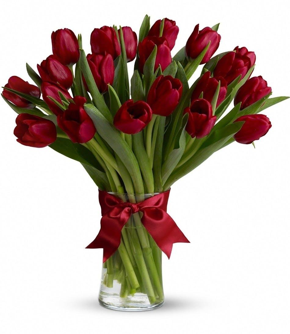 Red Tulips San Diego, Red Tulip Flowers San Diego, Red Tulip Flower ...