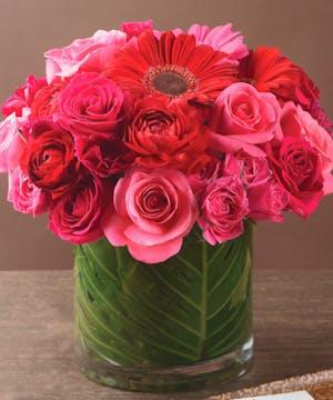 Pink Rose Arrangement, La Mesa Florist