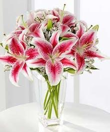 Stargazer Floral Arrangements, Florist San Diego