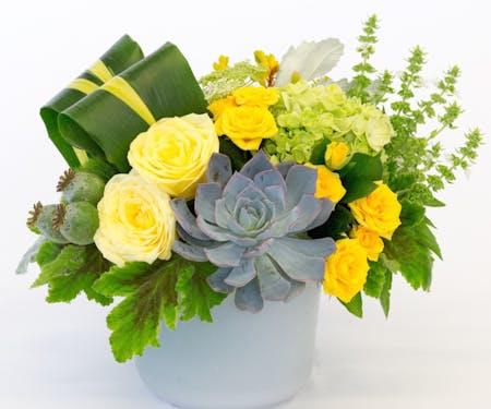Most Popular Flowers