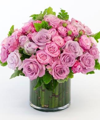 Lavender Rose Garden