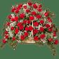 Allen's Fireside Farewell - 48 Roses